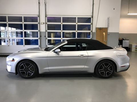 Pre-Owned 2019 Ford Mustang EcoBoost Premium